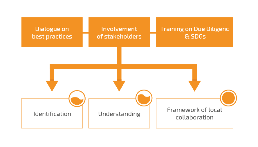participative processes